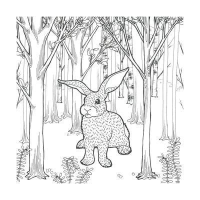 https://imgc.artprintimages.com/img/print/color-the-forest-xi_u-l-q1aztvt0.jpg?p=0