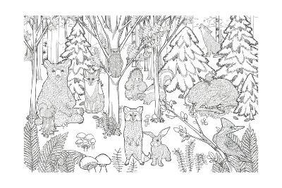 Color the Forest XIII-Elyse DeNeige-Art Print