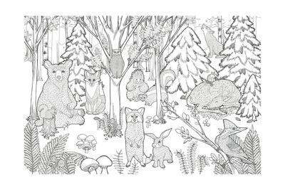 https://imgc.artprintimages.com/img/print/color-the-forest-xiii_u-l-q1azts80.jpg?p=0