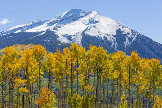 Colorado. Fall Aspens and Mountain-Jaynes Gallery-Photographic Print