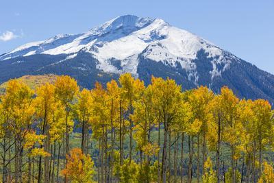 https://imgc.artprintimages.com/img/print/colorado-fall-aspens-and-mountain_u-l-pu44n40.jpg?p=0