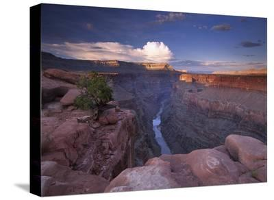 Colorado River from Toroweap Overlook, Grand Canyon National Park, Arizona-Tim Fitzharris-Stretched Canvas Print