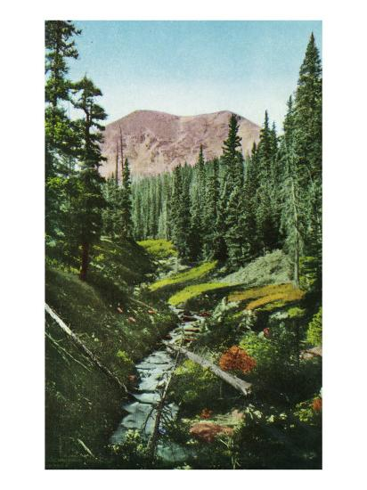 Colorado, View of Mt. Genevieve from Vasques Creek on the James Peak-Lantern Press-Art Print