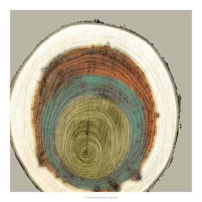 Colored Rings II-Studio W-Art Print