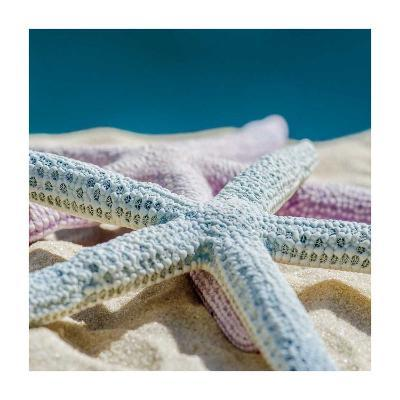 Colored Stars-Dina Marie-Giclee Print