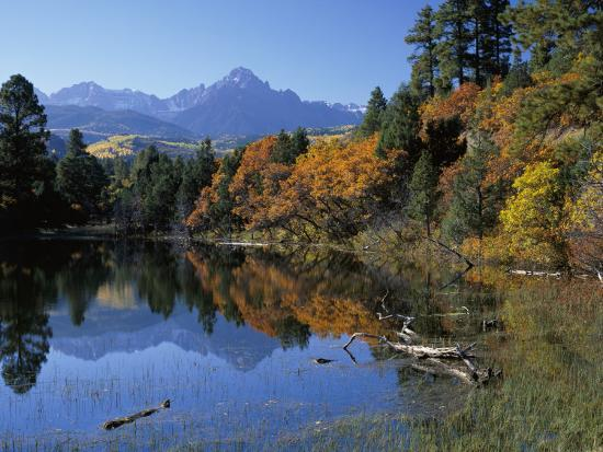 Colorful Autumn Forest in Front of Mount Sneffels Reflected in Water-Jeff Foott-Photographic Print