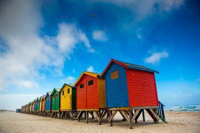 Colorful Beach Shacks, Muizenberg Beach, Cape Town, South Africa, Africa-Laura Grier-Photographic Print