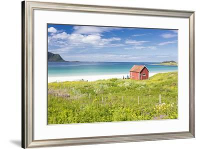 Colorful flowers on green meadows frame the typical rorbu surrounded by turquoise sea, Ramberg, Lof-Roberto Moiola-Framed Photographic Print