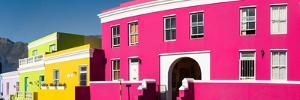 Colorful Houses in a City, Bo-Kaap, Cape Town, Western Cape Province, South Africa