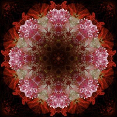 https://imgc.artprintimages.com/img/print/colorful-kaleidoscope_u-l-q1gzz2a0.jpg?p=0
