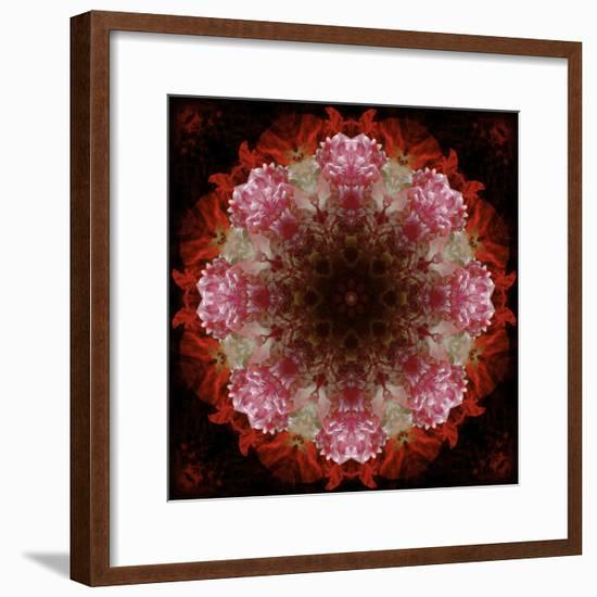Colorful kaleidoscope.-Anna Miller-Framed Photographic Print