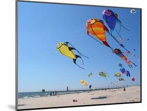 Colorful Kites Dot the Sky