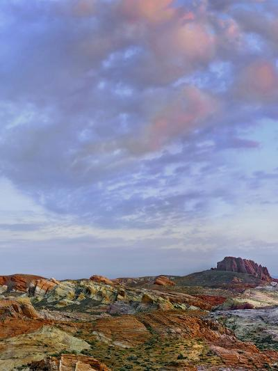 Colorful Landscape of Rainbow Vista, Valley of Fire State Park, Nevada, Usa-Tim Fitzharris-Photographic Print