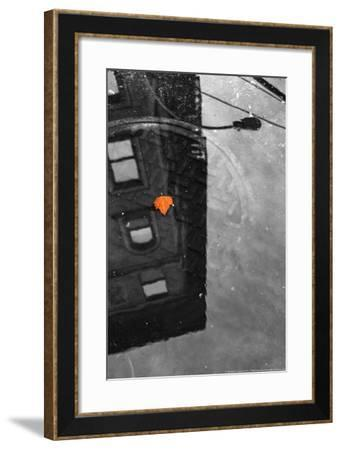 Colorful Leaf In B/W Reflection NYC--Framed Photo