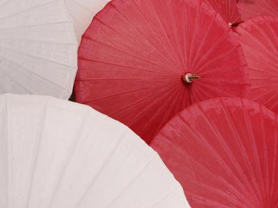 Colorful Open Asian Parasols--Photographic Print