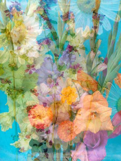 Colorful Photomontage of Flowers, Bouquet-Alaya Gadeh-Photographic Print