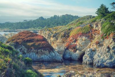 Colorful Point Lobos Seascape-Vincent James-Photographic Print