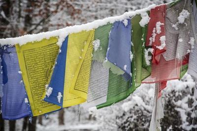 https://imgc.artprintimages.com/img/print/colorful-prayer-flags-hang-in-the-snow_u-l-pol0o00.jpg?p=0