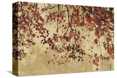 Colorful Season I-Pela & Silverman-Stretched Canvas Print