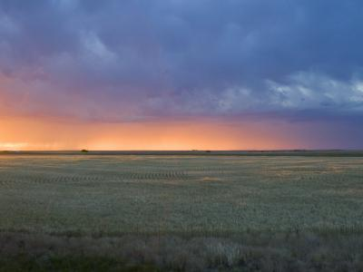 Colorful Sunset Illuminates the Sky over a Wheat Field in Colorado-Mike Theiss-Photographic Print
