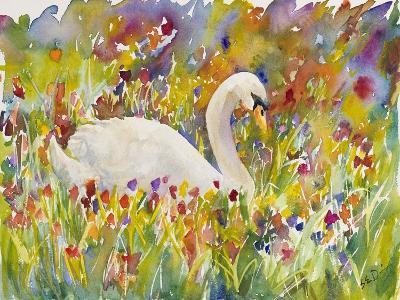 Colorful Swan-Sarah Davis-Giclee Print