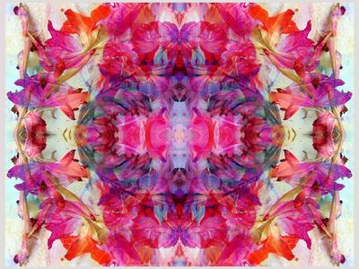 https://imgc.artprintimages.com/img/print/colorful-symmetric-layer-work-from-gladiolus-blossoms_u-l-q11ynxt0.jpg?p=0
