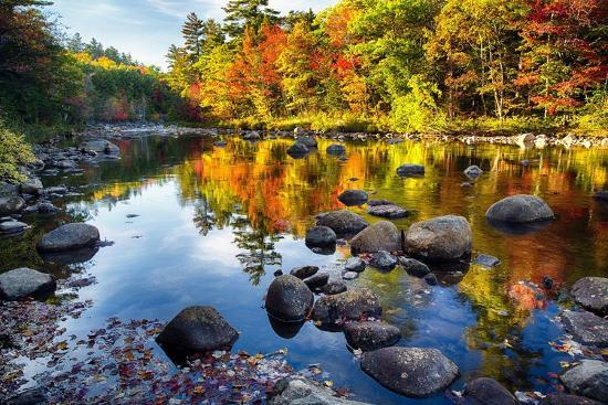 Colorful Trees Along the Swift River New Hampshire-George Oze-Photographic Print