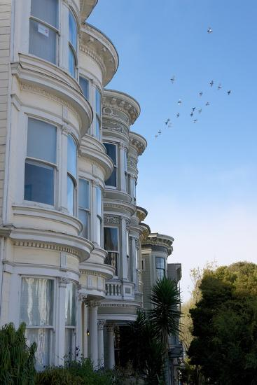 Colorful Victorian Homes in the Haight-Ashbury District of San Francisco, California-Krista Rossow-Photographic Print