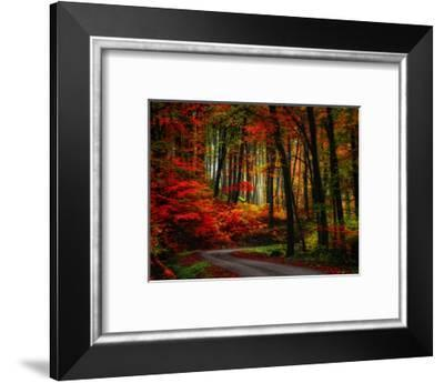 Colorful Way-Philippe Sainte-Laudy-Framed Photographic Print