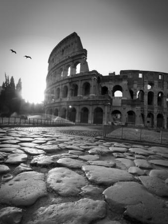 Colosseum and via sacra rome italy photographic print by michele falzone the new art com