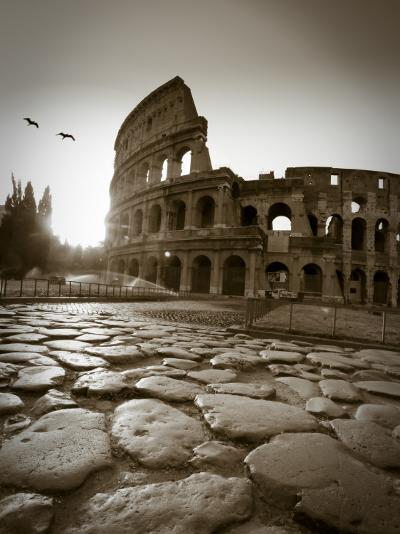 Colosseum and Via Sacra, Rome, Italy-Michele Falzone-Photographic Print