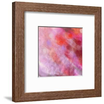 Colour and flower-Claire Westwood-Framed Art Print