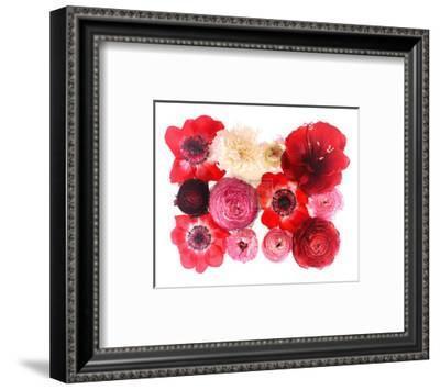 Colour Cluster II-Katja Marzahn-Framed Art Print