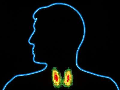 Coloured Gamma Scan of Normal Human Thyroid Gland-PASIEKA-Photographic Print