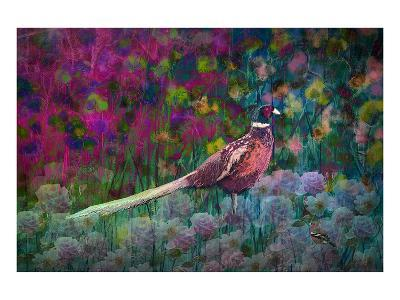 Coloured walk with Pheasant-Claire Westwood-Art Print