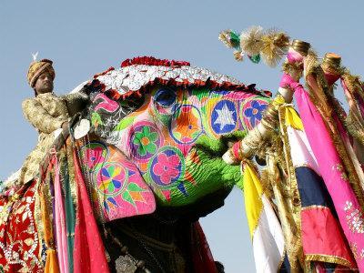 https://imgc.artprintimages.com/img/print/colourful-elephants-at-elephant-festival_u-l-p5xv6h0.jpg?p=0