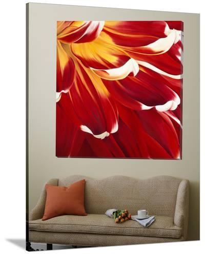 Colourful Floral I-Yvonne Poelstra-Holzaus-Loft Art