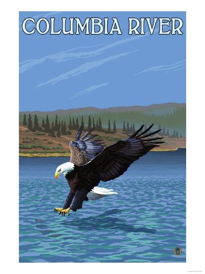 Columbia River, Washington - Eagle Diving-Lantern Press-Art Print