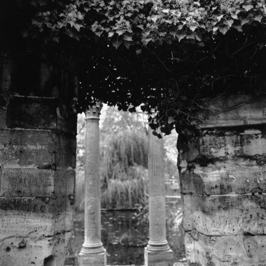 Columns and Pond with Tree, Paris, France-Ellen Kamp-Photographic Print