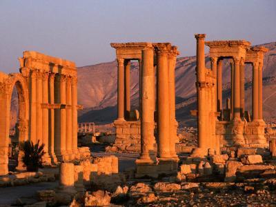 Columns of Ruins at Dawn, Palmyra, Syria-Wayne Walton-Photographic Print