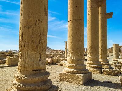 Columns of the Roman Ruins of Palmyra, Syria-siempreverde22-Photographic Print
