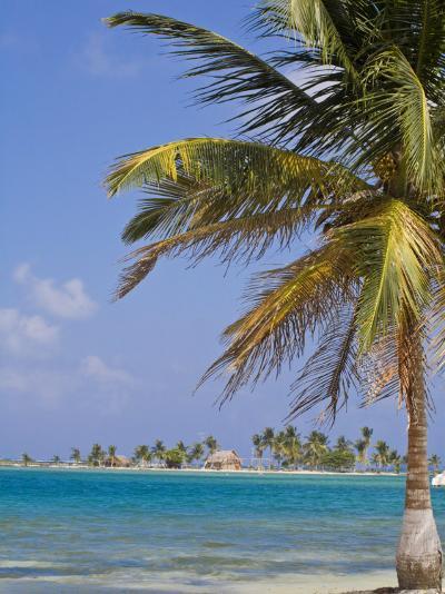 Comarca De Kuna Yala, San Blas Islands, Panama, Central America-Jane Sweeney-Photographic Print
