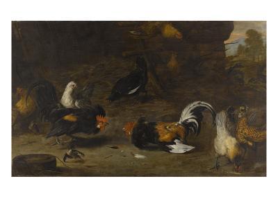 Combat de coqs-Melchior de Hondecoeter-Giclee Print