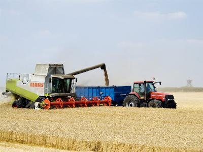 Combine Harvester Unloading Grain into Trailer, England-Martin Page-Photographic Print