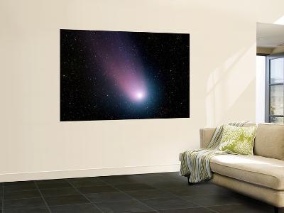 Comet C/2001 Q4 (NEAT)--Wall Mural