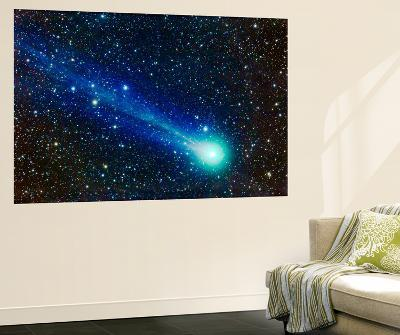 Comet Lovejoy (C-2014 Q2)-Stocktrek Images-Wall Mural