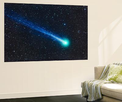 Comet Lovejoy (C-2014 Q2)-Stocktrek Images-Wall Mural