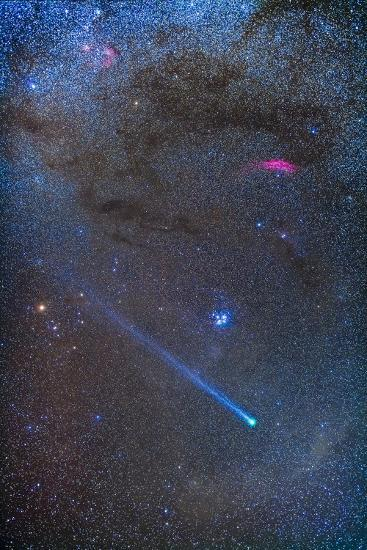 Comet Lovejoy's Long Ion Tail in Taurus-Stocktrek Images-Photographic Print