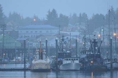 https://imgc.artprintimages.com/img/print/commercial-fishing-boats-anchored-in-the-harbor-on-a-rainy-day_u-l-pwdm320.jpg?p=0