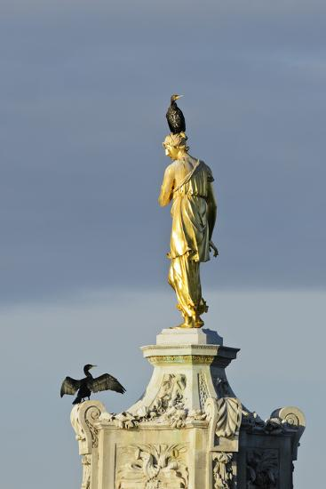 Common Comorants Perched on Statue Drying Out, Bushy Park, London, England, UK, November-Terry Whittaker-Photographic Print